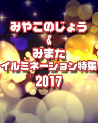 irumi_2017_i